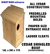 Outdoor cedar squirrel house
