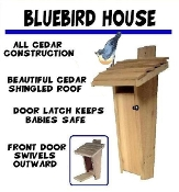 Bluebird House - Slot Entrance