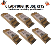6 ARK WORKSHOP LADYBUG HOUSE KITS